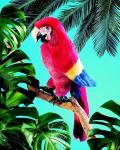 plyšový Papoušek Ara