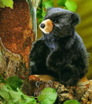 plyšové Mládě černého medvěda, plyšová hračka