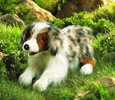Plyšová hračka: Australský ovčák plyšový | Folkmanis