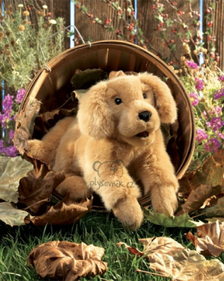 Plyšová hračka: Chundelaté štěně labradora plyšové | Folkmanis