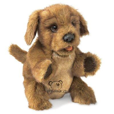 Plyšová hračka: Chundelaté štěně plyšové | Folkmanis