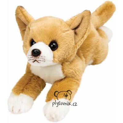Plyšová hračka: Čivava Yomiko plyšová | Suki Gifts