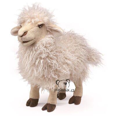 Plyšová hračka: Dlouhosrstá ovce plyšový | Folkmanis