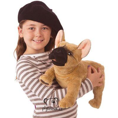 Plyšová hračka: Francouzský buldoček plyšový | Folkmanis