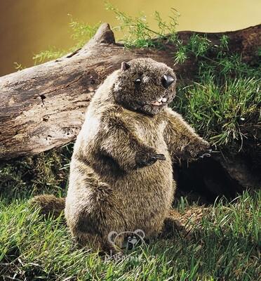 Plyšová hračka: Hnědý svišť plyšový | Folkmanis