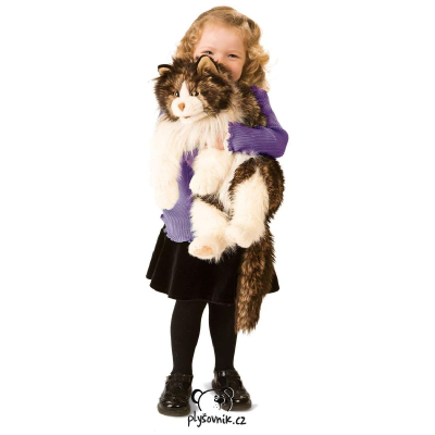 Plyšová hračka: Kočka Ragdoll plyšová | Folkmanis