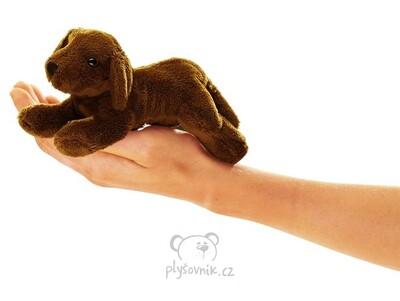 Plyšová hračka: Maňásek na prst labrador plyšový | Folkmanis