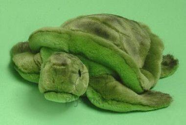 Plyšová hračka: Menší želva plyšová | Russ Berrie