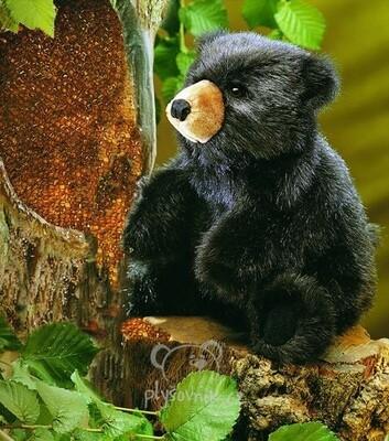 Plyšová hračka: Mládě černého medvěda plyšové | Folkmanis