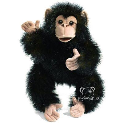 Plyšová hračka: Mládě šimpanze plyšák | Folkmanis