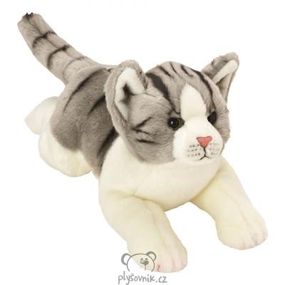 Plyšová hračka: Mourovatá kočka plyšová | Suki Gifts