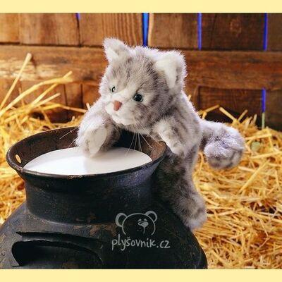 Plyšová hračka: Mourovaté kotě plyšové   Folkmanis