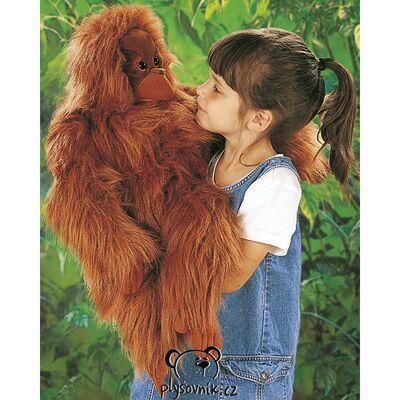 Plyšová hračka: Oranguntan plyšový | Folkmanis
