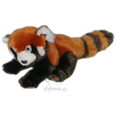 Plyšová hračka: Panda červená plyšová   Global Express