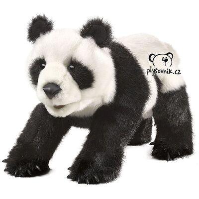 Plyšová hračka: Panda velká plyšová | Folkmanis