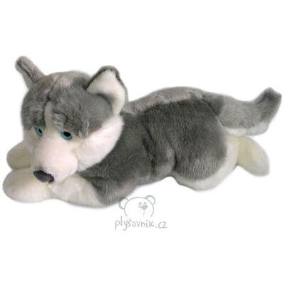 Plyšová hračka: Pes husky plyšový | Global Express