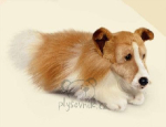 plyšová Kolie Lassie menší