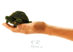 plyšová Maňásek na prst želva, plyšová hračka