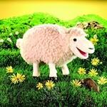 plyšová Ovce