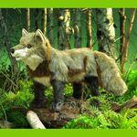 plyšová Šedá liška