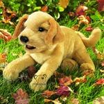 plyšové Štěně labradora