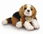 plyšový Beagle velký