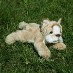 plyšový Buldog Roddy štěně, plyšová hračka