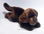 plyšový Hnědý labrador štěně, plyšová hračka