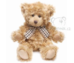 plyšový Medvěd Chazz menší, plyšová hračka