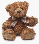 plyšový Medvěd Desmond