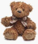 plyšový Medvěd Desmond velký