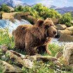 plyšový Medvěd hnědý, plyšová hračka