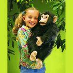 plyšový Šimpanz, plyšová hračka