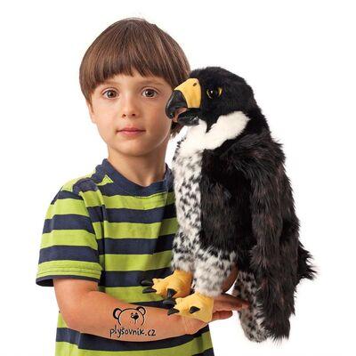 Plyšová hračka: Sokol stěhovavý plyšový | Folkmanis