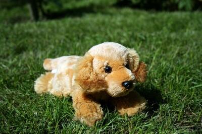 Plyšová hračka: Štěně anglického kokršpaněla plyšový | Russ Berrie