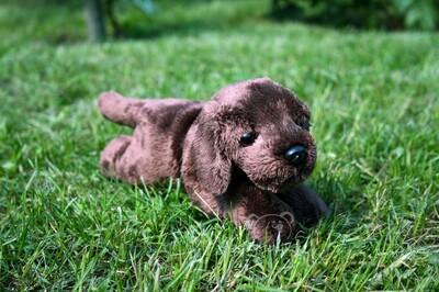 Plyšová hračka: Štěně Kenrich labrador plyšový | Russ Berrie