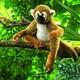 Plyšová hračka: Opice saimiri plyšová, Folkmanis