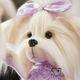 plysovy-maltezacek-lucky-doggy-lilac-detail
