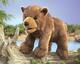 mlade-medved-hnedy-folkmanis-3065