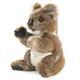 Plyšová hračka: Medvídek koala plyšový, Folkmanis