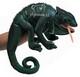 folkmanis-chameleon.jpg