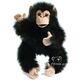 plysove-mlade-simpanze-opicak