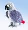 Plyšová hračka: Emil - papoušek Žako plyšový, Folkmanis