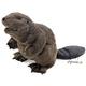 Plyšová hračka: Černý bobr plyšový, Folkmanis