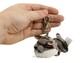 Plyšová hračka: Klíčenka kočka Shadow plyšová, Russ Berrie