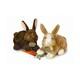 Plyšová hračka: Tmavě hnědý zajíc plyšový, Russ Berrie