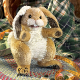 Plyšová hračka: Zajíc Ušáček plyšový, Folkmanis