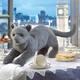 Plyšová hračka: Vrnící britská krátkosrstá kočka plyšová, Folkmanis