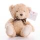 Plyšová hračka: Medvěd Thomas plyšový, Suki Gifts
