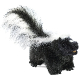 plysovy-skunk